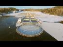 Вести.Ru: Рыбный бизнес. Специальный репортаж Георгия Подгорного
