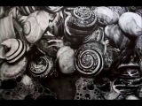 Drawing Pencil Hyperrealism - Time-lapse - VAVALUCI - Silvia Pagano Art