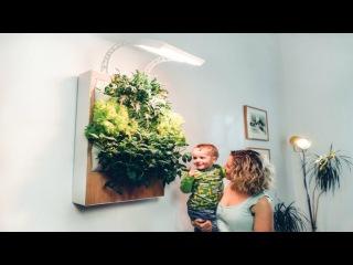 Amazing Invention Indoor Farm Grow Fresh Organic Food at Home - Herbert