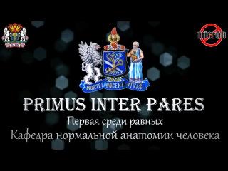 PRIMUS INTER PARES 2015 (microb production)