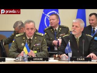 Крах надежд: Украина не нужна НАТО