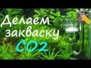 Лучший рецепт закваски CO2 для газогенератора!