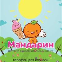 Логотип ДРЦ Мандарин Владимир