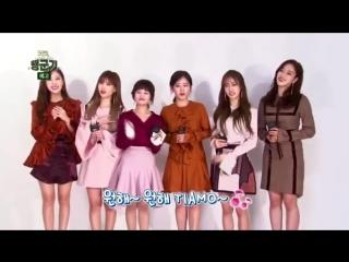 [PROMO] 161214 T-ara 'Happy Military Story' @ Kookbang TV