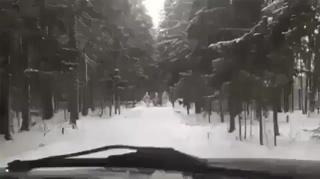 Всем , кто не верит в деда мороза, он уже в пути!) #НовыйГод