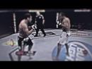 Junior Dos Santos vs Gabriel Gonzaga | Leo