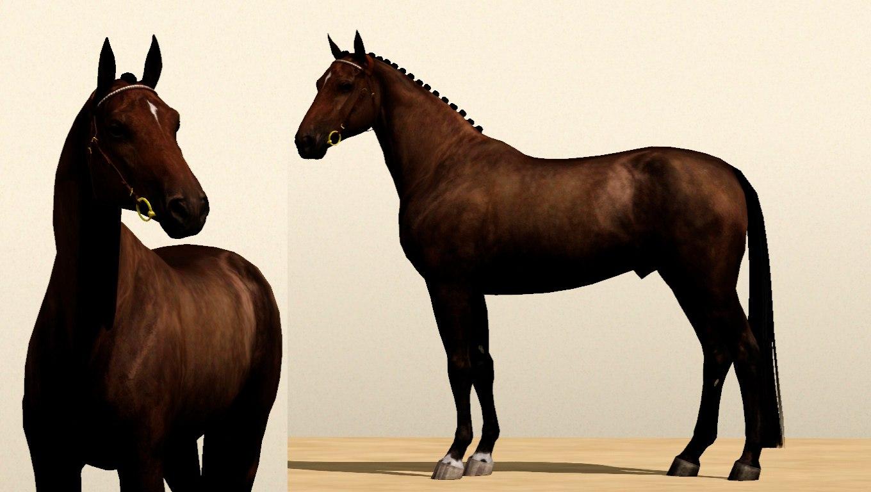 Регистрация лошадей в RHF 2 - Страница 5 S7yS7kaFH5g