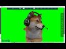 FaceRig Как сделать енота, как у Клэша Klash ,Собака как у йоги,доги,игра через аватары