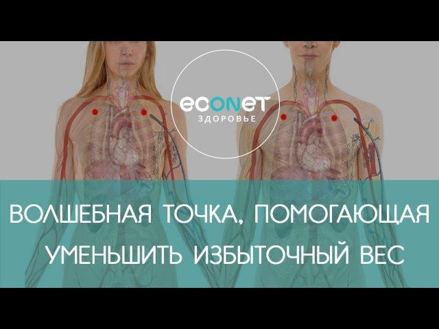 Ку Фан - ВОЛШЕБНАЯ точка от лишнего веса | Econet.ru