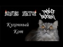Ignes Fatui и Тихие Братья - Кухонный кот live 2017