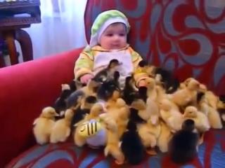 Малюк і каченята :)