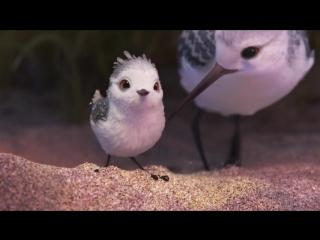 Piper • 2016 • Pixar (короткометражный фильм)