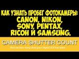 Как узнать пробег фотокамеры  Canon, Nikon, Sony, Pentax, Ricoh и Samsung