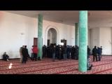 Мечеть в Спб, Коломяги