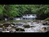 Natures Calming Sounds for Relaxation Meditation-Sound of a Waterfall Birdsong-Johnnie Lawson