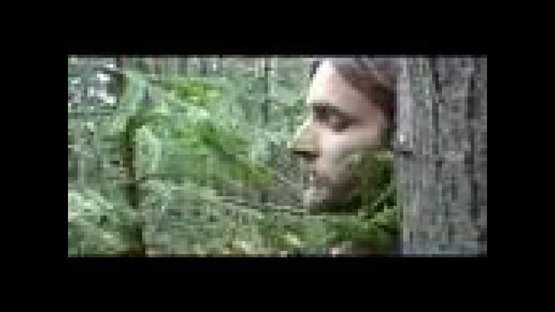 Adorea - Fencing Team: Ambush (from Shadows of Dream, 2007)