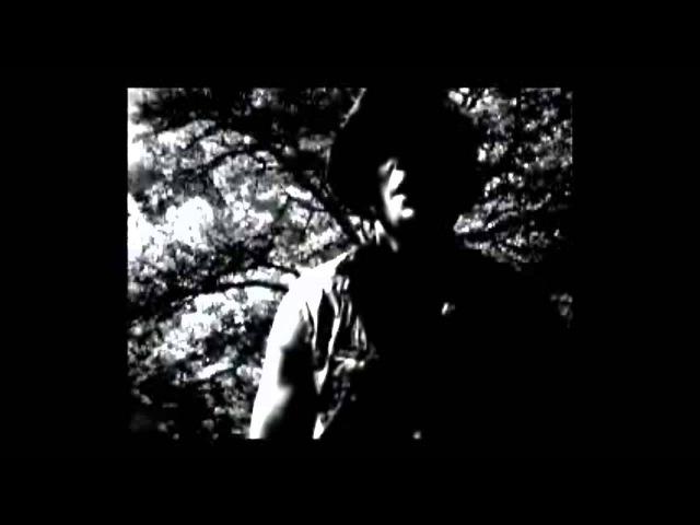 Seba and Paradox feat Robert Manos - Last Good Bye