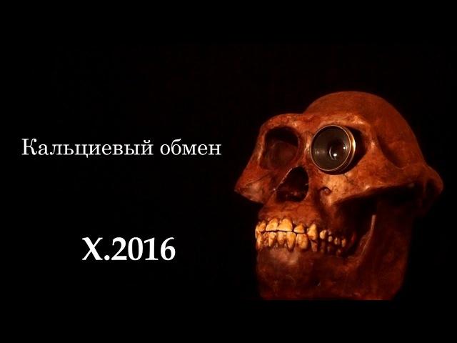 С.В. Савельев: Кальциевый обмен