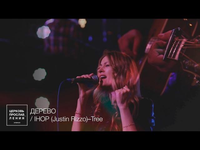 ДЕРЕВО / Прославление Ачинск / Originally IHOP (Justin Rizzo)–Tree