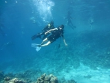 Ниряю с аквалангами Видео 2