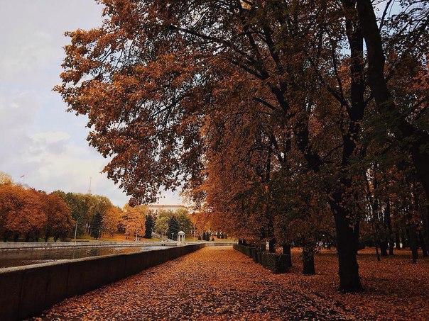 Для кого-то всего лишь осень, а кому-то тепло и вечность. Кто-то видит в восьмёр...