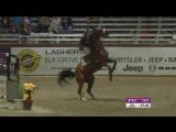 7 правил как правильно падать с лошади. Клуб верховой езды