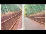 Натяжные потолки и фотообои от Фран Студио Чехов