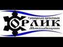 Орлик М Южноукраїнськ виступ Вірича
