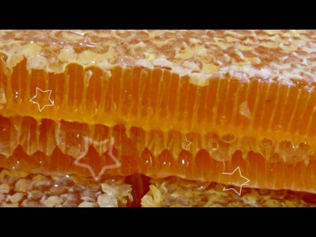 МЕДОВЫЕ СОТЫ | какая польза меда для здоровья? польза меда для мужчин? мед польза для женщин?