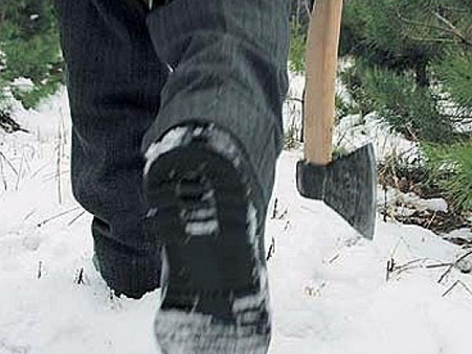 Житель Черкесска занимался незаконной вырубкой деревьев в пойме реки Маруха