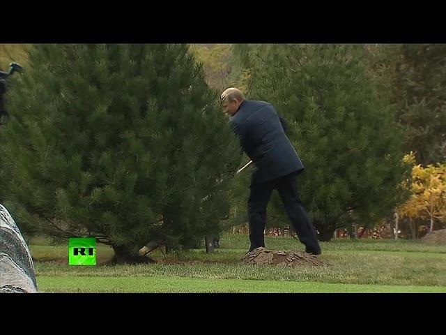 Похороны рубля · coub, коуб