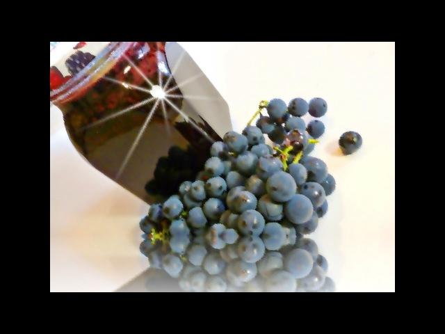 Виноградное варенье Рецепт смотреть онлайн без регистрации