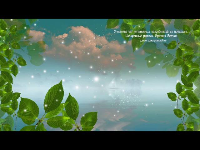 Очищение от негативных воздействий из прошлого (V.2). Изохронные ритмы. Spiritual Retreat.