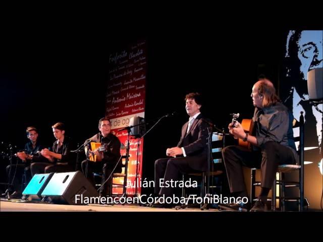 Julián Estrada en el 50 Festival de Cante Grande Fosforito de Puente Genil