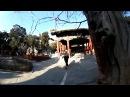 Путешествие. Пекин. Запретный город, Императорский сад, 360 панорамное видео