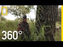 The Protectors, Walk in the Ranger's Shoes (Full VR Documentary)   National Geographic