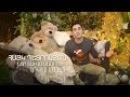 Hayk Petrosyan - Nor tarva masin... (Official music video)