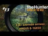 theHunter Call of the Wild   #13 338 + Элитная оптика ARGUS 8-16X50 (тест оптики)