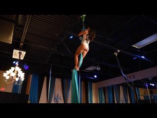 Florida Pole Fitness Championship 2017 application Silks Pro Division-Xan Kaplan...