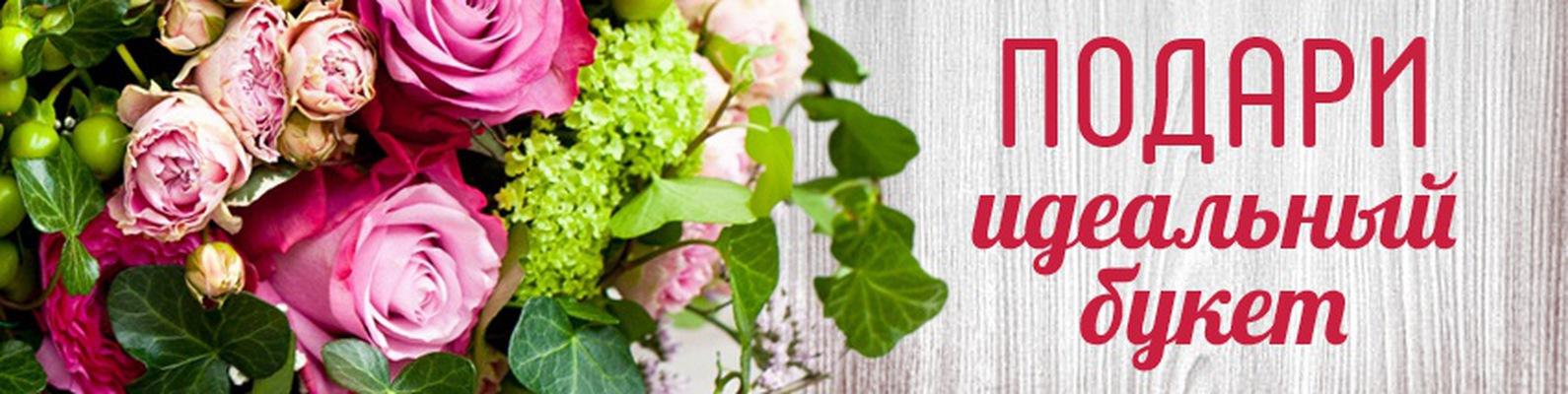 Купить цветы в братске оптом купить саженцы цветы интернету