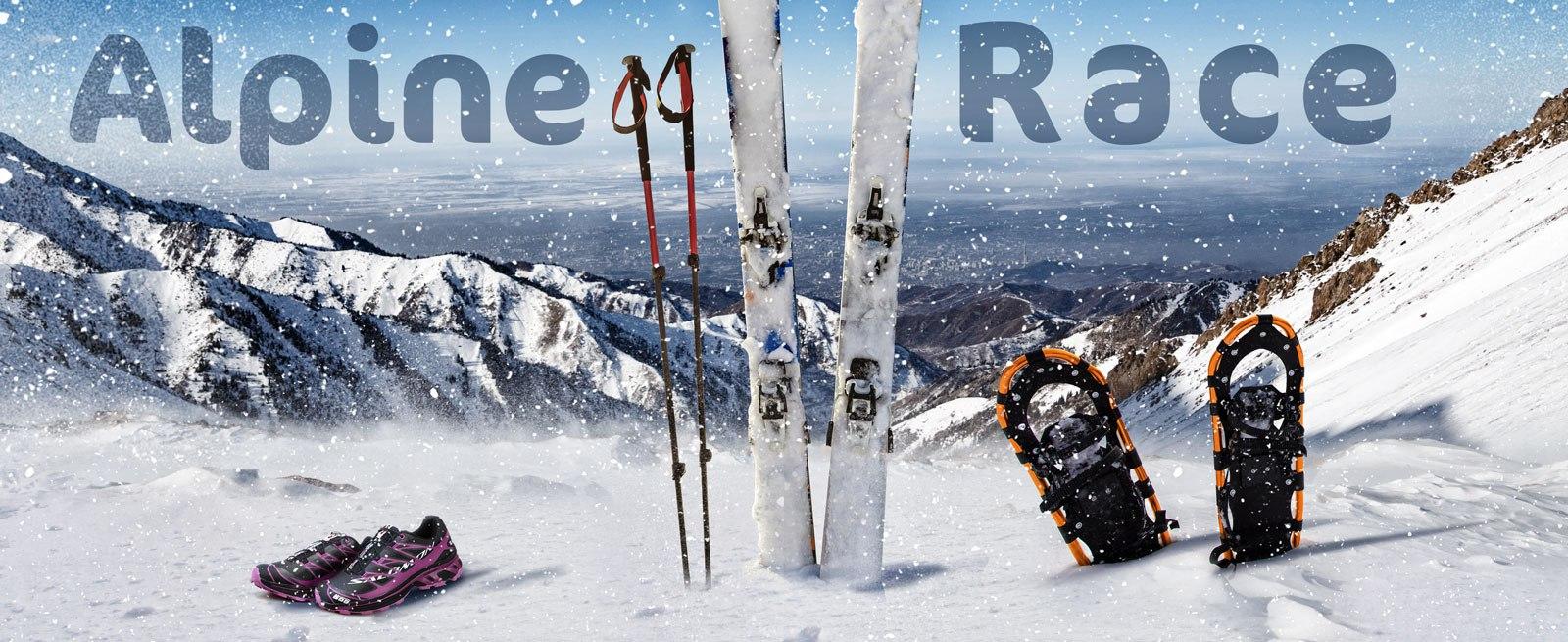 Alpine Race