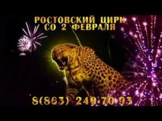 Артисты! Звери! Сенсации! в Ростовском цирке с 02.02