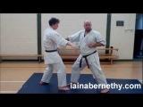 Practical Kata Bunkai: Pinan Nidan / Heian Shodan Moves 3 to 6