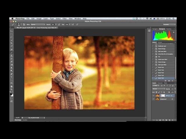 07. Picture Project - Цветокоррекция Золотая осень. Онлайн-школа ретуши и обработки фотографий Highlights