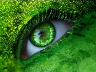 AMAZON Eye of the Jungle (Lounge Trance Ambient Mix) HD