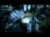 Alan Wake 7 - серия. Темный лес