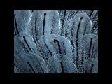Sascha Funke, Nina Kraviz - Moses (Stimming Remix)