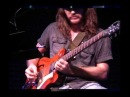 LOOPING JAM with Roland AC 33 amplifier loop station guitar voice beatbox Peter Luha