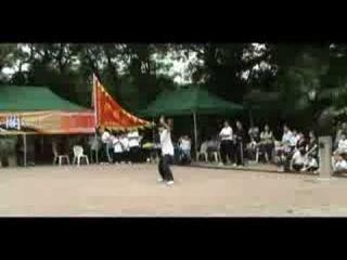 香港白鶴派/ 出步拳 Сянган Бай Хэ Пай/ Чу Жу Бу (李嘉琅)