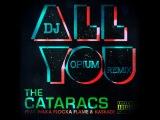 The Cataracs feat. Waka Flocka Flame &amp Kaskade The Nycer feat. Deeci - All You Nasty Girl Remady ( Dj Opium Remix)
